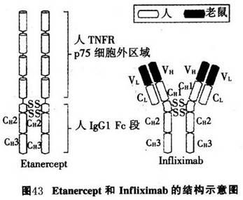 电路 电路图 电子 原理图 347_285